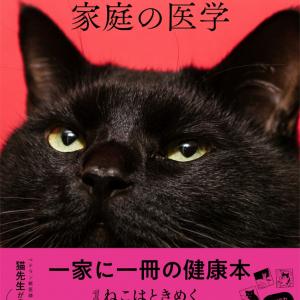 食欲のない猫にはナニが正解? おやつは必要? 獣医さんが教える長生き猫ごはん