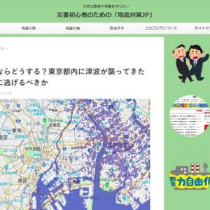 あなたならどうする?東京都内に津波が襲ってきたらどこに逃げるべきか(災害初心者のための「地震対策JP」 )