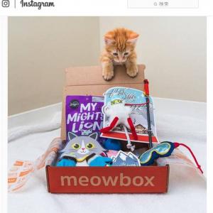インスタ映えする猫用の定額サービス『meowbox』