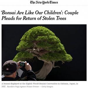 「我が子のように育ててきた盆栽達」 盆栽の盗難被害にあった飯村さんご夫妻の想いが海外で話題
