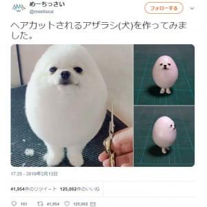 何に見える? ヘアカットされる犬の造形作品に「正面からは犬、横からはハンプティダンプティ」「二足歩行する米粒」ツッコミ集まる