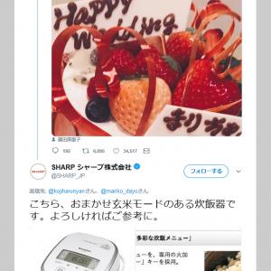 篠田麻里子さん結婚報道に小嶋陽菜さんが「玄米。。。」とツイート シャープが玄米モードのある炊飯器を紹介