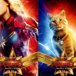"""実は猫が""""重要""""な映画たち『キャプテン・マーベル 』では猫の「グース」がポスターにまで登場!"""
