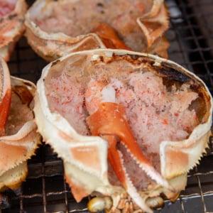 食べたい! 全部食べたい!『魚ジャパンフェス2019』が海産物天国だった