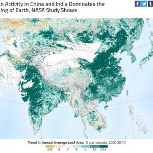 地球は20年前より緑が豊かになっています 中国とインドのおかげなんです
