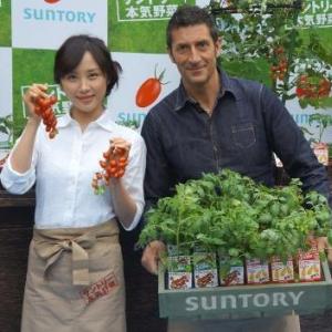 スーパーでは手に入らない絶品トマト! 育てやすいから家庭菜園デビューにピッタリ