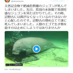 沖縄でジュゴン死亡のニュース 鳩山由紀夫元首相が「 辺野古の埋め立てで遂に死んでしまいました 」とツイートし反響