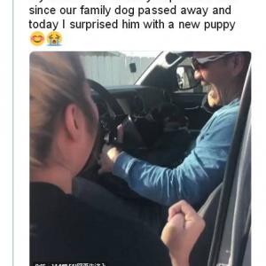愛犬を失った悲しみと子犬がやってきた喜びが交錯してとにかく涙が止まらない 愛犬家ならこのお父さんの気持ちは痛いほどわかるでしょ