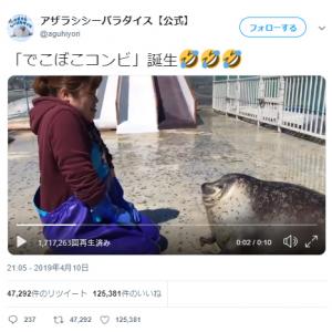 """アザラシの""""首に顔が食い込む""""動画ツイートが話題に「一緒にやってたら身体ほぐれてきた〜」「かめさんみたい」"""