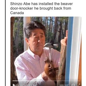 """安倍首相 アメリカ版『Twitter』モーメントの""""Cute""""カテゴリーに登場"""