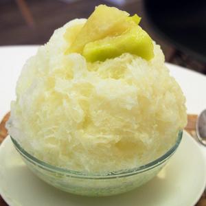 果肉がジューシー&果汁シロップがやさしい味わい! 土浦で食べた生メロンのかき氷が絶品だった