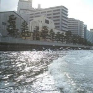 ニコニコ生放送7月12日(日)9時 日曜昼は船を追いかけよう!