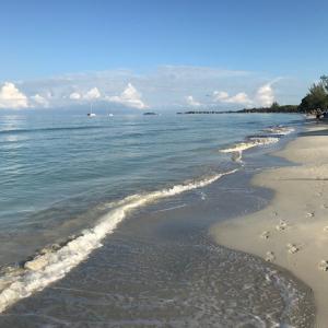 ジャマイカ旅行で外せない観光スポット7選!どこへ行ってもカメラを構えたくなる絶景