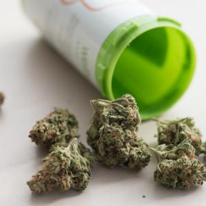 犯罪者インタビュー:「盲目の大麻栽培人」に話を聞いてみた