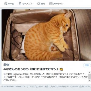 声優・花江夏樹さんのツイートで話題の「旅行に連れてけマン」とは……!?