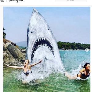 インドのビーチにあるインスタ映えスポット これは写真撮りたくなるわ