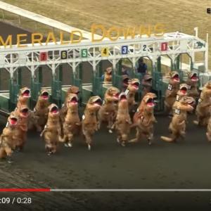 馬じゃなくてティラノサウルスが走る「T-rex Race」 フェイクっぽいけどリアルです