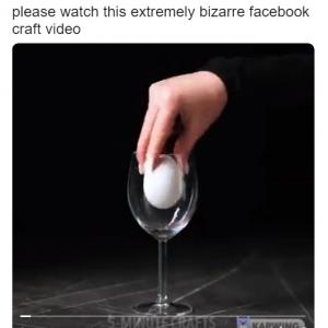 """動画:卵の色とサイズが変化するのは理解できた ただ""""なんのために""""がどうしても理解できない"""