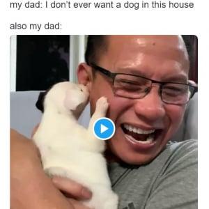 「この家では犬は飼わない」と言っていた父がこれ