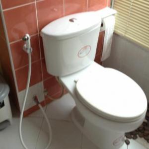 タイのシャワートイレ事情(自浄) なんつって
