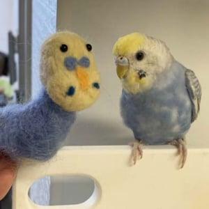 羊毛フェルトでインコを作った結果→「友達にめっちゃ笑われた」「体はネギみたいになるのが面白い」
