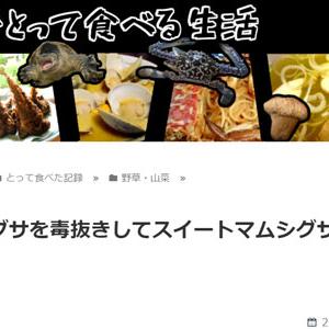 マムシグサを毒抜きしてスイートマムシグサを作った話(東京でとって食べる生活)
