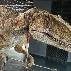 子どもと行きたい旅の決定版。恐竜王国・福井が最高すぎる!