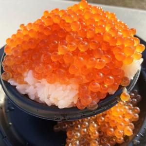 魚介料理ざんまい! フィッシャーマンズフェス2019@日比谷公園に行ってきた(11/14~11/17開催)