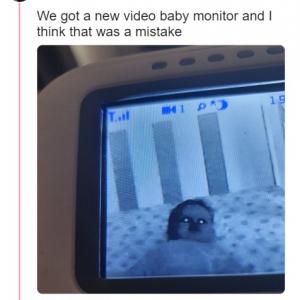 監視カメラ×赤ちゃん=ホラー!? 「カメラが故障しているのか、あなたの赤ちゃんが呪われてるのか」