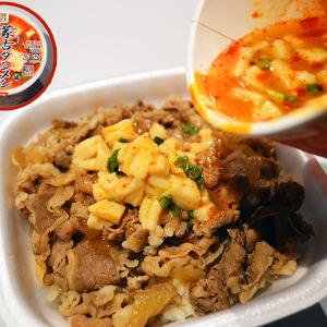ウマすぎてビビる!! 牛丼に「蒙古タンメン中本辛旨豆腐スープ」をぶっかけると最高のごちそうになるのです