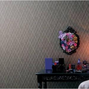 賃貸なのに壁に落書きもOK!? 壁紙を60種類から選べるレオパレス21の『マイコレプラン』