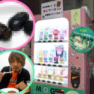 秋葉原にある昆虫食自動販売機を使ってみた! 本物のカブトムシとコオロギを実食!(閲覧注意)