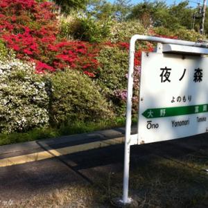 【写真:原発20キロ圏内のリアル】今年もツツジは咲いていた―JR夜ノ森駅(富岡町)