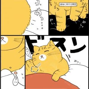 """愛猫との""""添い寝風景""""を描いた漫画に羨望の声殺到 「人類が目指すべき生活」「羨ましすぎて駄目になりそう」"""