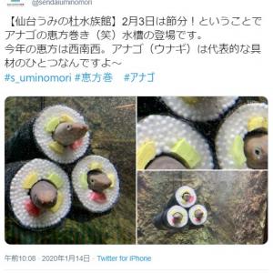仙台うみの杜水族館「アナゴの恵方巻き水槽の登場です」 ツイート投稿に「洒落の効いた水族館だな」「この発想はなかった」の声