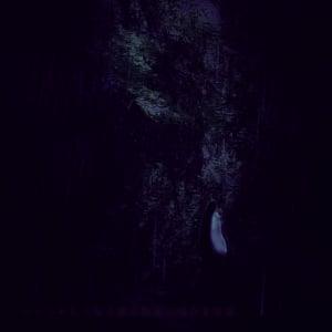 """「誰にも知らせず、川に投げ捨てて……」鬼か狐か? 雨の山中で高僧に発見された""""謎の女""""の世にも奇妙な物語~ツッコみたくなる源氏物語の残念な男女~"""