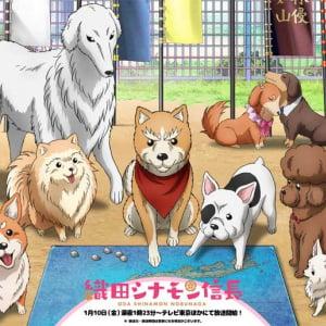 NHK大河『麒麟がくる』もびっくり! 信長が犬になった深夜アニメが面白い