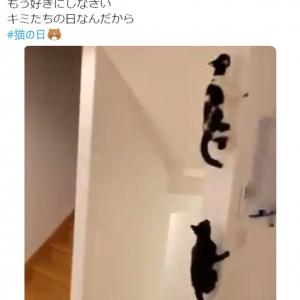 「もう好きにしなさい」 猫の日に愛猫たちを全力で甘やかす藤あや子さんの投稿が話題に