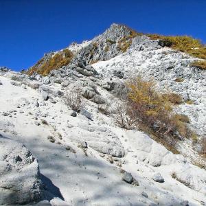 「花崗岩が新型コロナウイルスに効く」風説が流布!? 専門家「何ら効果は期待できません」と否定