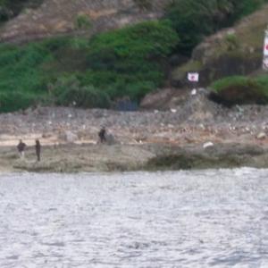 【動画】尖閣諸島の魚釣島に上陸して国旗を振る日本人の映像