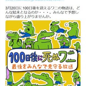 「100日目をみんなで見届けよう!」 3月20日の『niconico』での「100日後に死ぬワニを見守る放送」に賛否