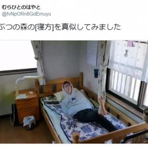 『どうぶつの森』の寝方を現実世界で真似したらこうなった 「めっちゃカントリーなベッド」