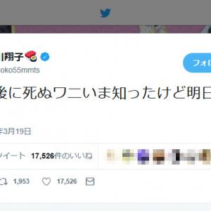 「100日後に死ぬワニ」完結 前日に中川翔子さん「100日後に死ぬワニいま知ったけど明日しぬの?」