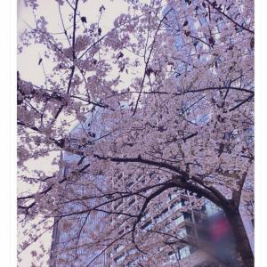 「春が来たって感じ」「フラグ立てるのやめれwwww」  元NGT48・山口真帆さんが「よくね?」とツイート