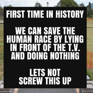 「テレビの前で何もしないことで人類を救える」ニュージーランド警察のメッセージが話題に