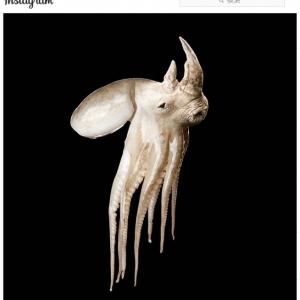 """こういう動物が本当に存在していたら怖いかも 異なる動物同士が合体して誕生した""""ハイブリッド・アニマル"""""""