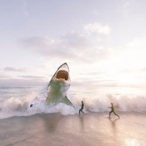 巨大鮫メガロドンは現存する?絶滅説と生存説のそれぞれを解説