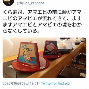 回転寿司で流れてきた「アマエビ」と「アマビエ」にゲシュタルト崩壊する人続出 くら寿司のポップイラストが話題に