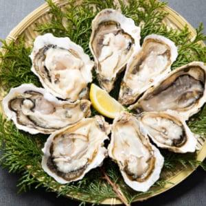 牡蠣の美味しい時期はいつ?食べてはいけない時期があるって本当?
