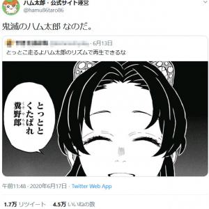 「胡蝶しのぶ『とっととくたばれ糞野郎』がハム太郎のリズムで再生できる」ツイートに公式サイト運営「鬼滅のハム太郎 なのだ。」